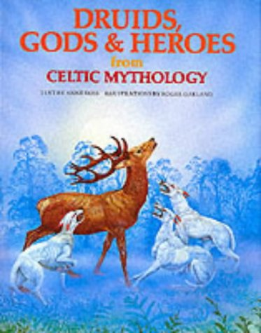 9780856540493: Druids, Gods and Heroes from Celtic Mythology (World mythology series)