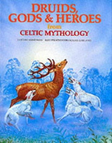 9780856540493: Druids, Gods & Heroes from Celtic Mythology