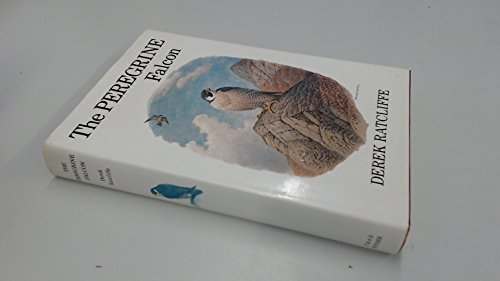 9780856610264: Peregrine Falcon