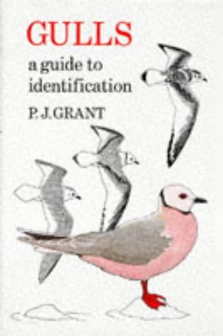 9780856610448: Gulls, Second Edition: A Guide to Identification (T & AD Poyser)