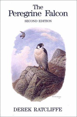 9780856610608: The Peregrine Falcon, Second Edition