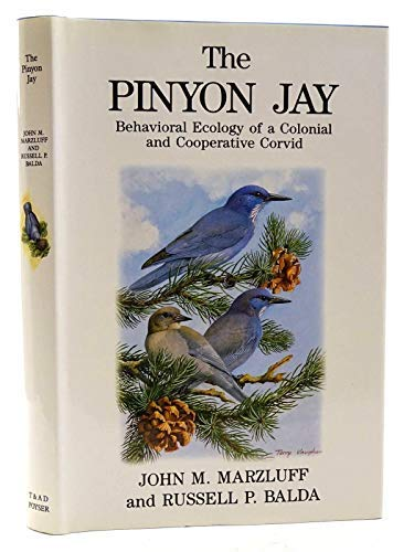 9780856610646: The Pinyon Jay: Behavioral Ecology of a Colonial and Cooperative Corvid (T & AD Poyser)