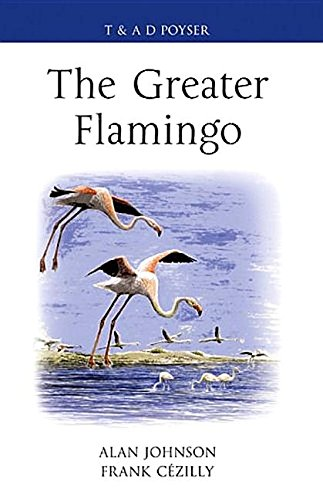 9780856611155: The Greater Flamingo