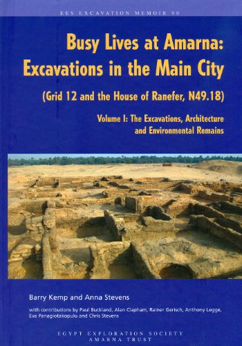 9780856981951: Busy Lives at Amarna: Excavations in the Main City (Grid 12 and the House of Ranefer, N49.18) Volume I: The Excavations, Architecture and Environmental Remains (Excavation Memoirs)