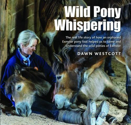 9780857042767: Wild Pony Whispering: The Real Life Story of How an Orphaned Exmoor Pony Foal Helped Us to to Tame and Understand the Wild Ponies of Exmoor