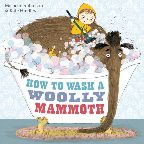 9780857075802: How to Wash a Woolly Mammoth