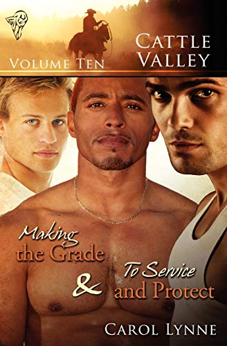 9780857154026: Cattle Valley Vol 10