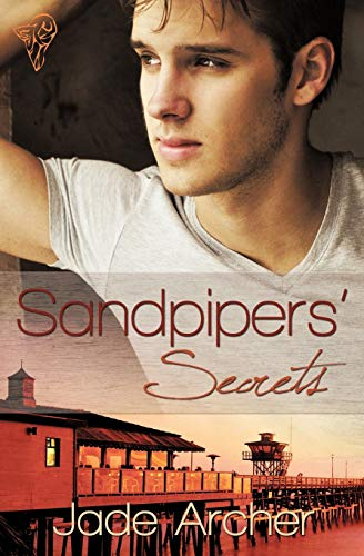 9780857154200: Sandpipers' Secrets