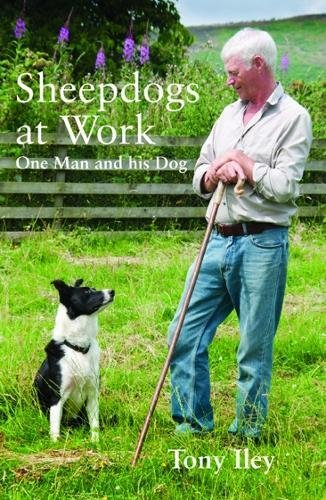 9780857160201: Sheepdogs at Work: One Man and His Dogs