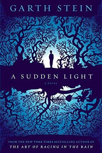9780857205759: Sudden Light