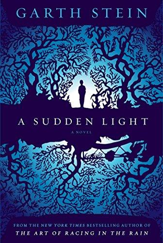 9780857205759: A Sudden Light