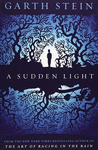 9780857205766: A Sudden Light