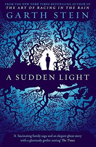 9780857205773: A Sudden Light