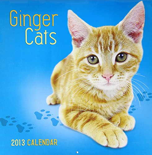 9780857227294: Ginger Cats Wall 2013