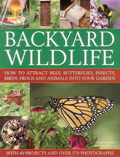 9780857230034: Backyard Wildlife: How to Attract Bees, Butterflies, Insects, Birds, Frogs and Animals into Your Garden