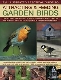 9780857230720: AN ILLUSTRATED PRACTICAL GUIDE TO ATTRACTING & FEEDING GARDEN BIRDS