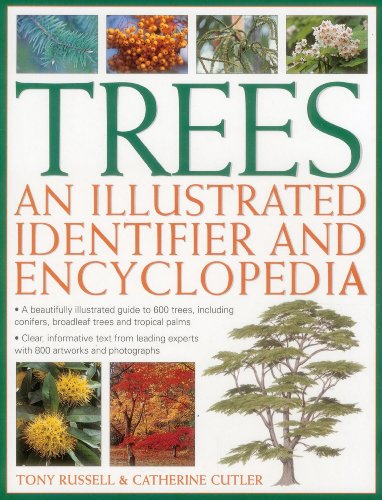 9780857237644: Trees: An Illustrated Identifier and Encyclopedia: A Beautifully Illustrated Guide to 600 Trees, Including Conifers, Broadleaf Trees and Tropical Palms
