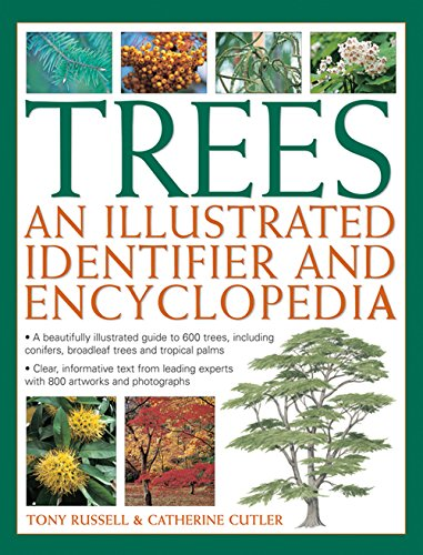 9780857237651: Trees: An Illustrated Identifier and Encyclopedia