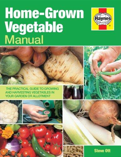 Home-Grown Vegetable Manual: Growing and harvesting vegetables: Ott, Steve