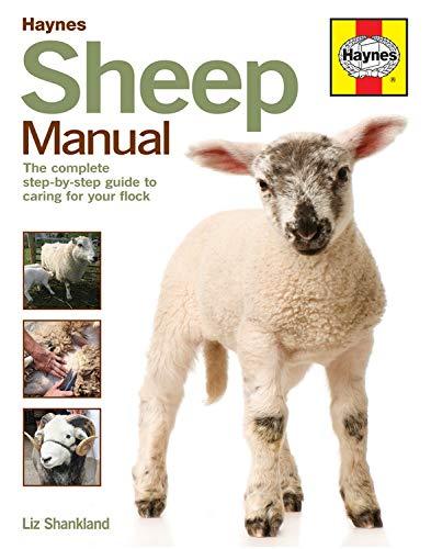 Sheep Manual: Liz Shankland