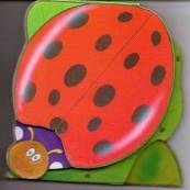 9780857345660: Ladybug