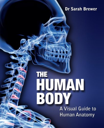 9780857382504: The Human Body: A Visual Guide to Human Anatomy