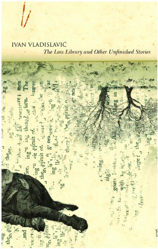 9780857420121: Vladislavic, I: Loss Library and other Unfinished Stories (The Africa List)