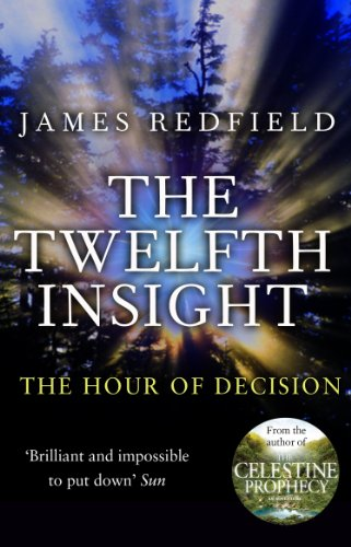 9780857500205: The Twelfth Insight