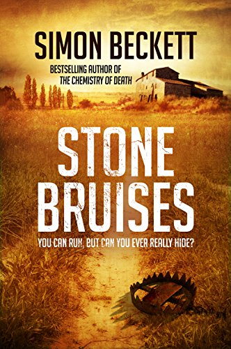 9780857502582: Stone Bruises: You Can Run, But Can You Ever Really Hide?