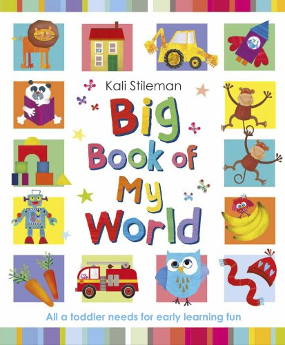 9780857530424: Big Book of My World