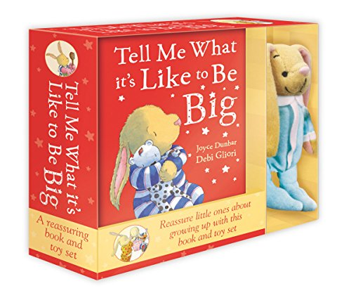 9780857532053: Tell Me What it's Like to be Big: Book & Toy Set