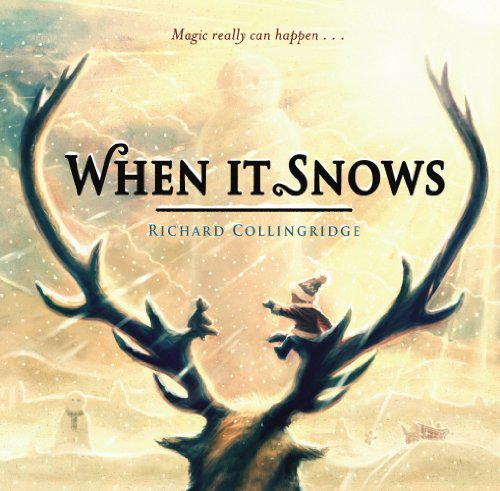 9780857560490: When It Snows