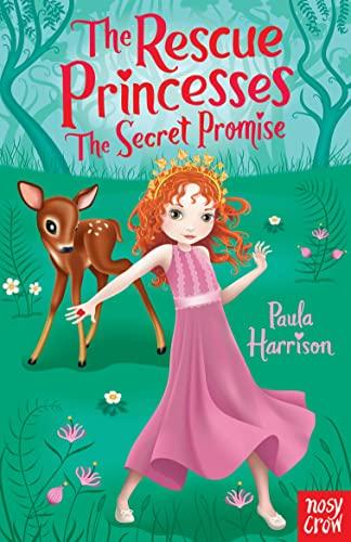 9780857630971: Secret Promise (The Rescue Princesses)