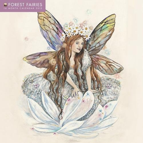 9780857753090: Forest Fairies Calendar 2013