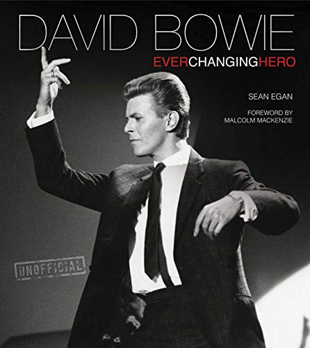 9780857759894: David Bowie: Ever Changing Hero (Rock Icons)