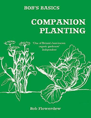 9780857834683: Bob's Basics: Companion Planting