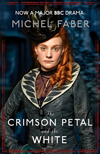 9780857860019: The Crimson Petal And The White