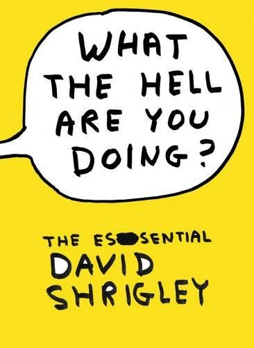 9780857860606: What the Hell are You Doing?: the Essential David Shrigley