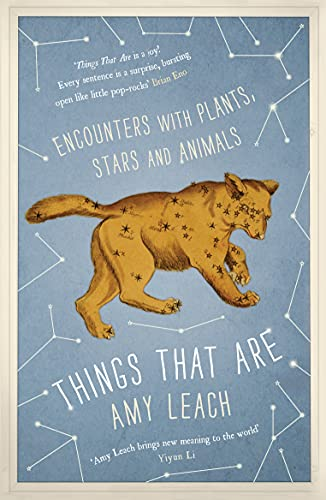 9780857868633: Things That are: Encounters with Plants, Stars and Animals