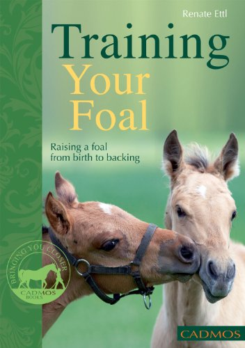 9780857880024: Training Your Foal: Raising a Foal From Birth to Backing