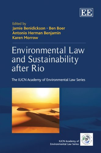 Environmental Law and Sustainability After Rio (The: Jamie Benidickson,Ben Boer,Antonio