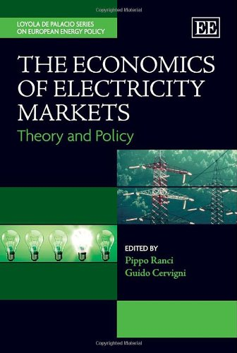 9780857933959: The Economics of Electricity Markets: Theory and Policy (The Loyola de Palacio Series on European Energy Policy)