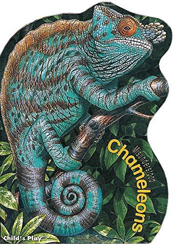 9780859535649: Chameleons (Misunderstood)