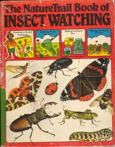 9780860200475: The Nature Trail Book of Insect Watching (Usborne Nature Trail)
