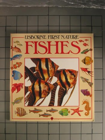9780860206262: Fishes (Usborne First Nature)