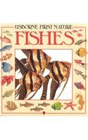 9780860206262: Usborne First Nature: Fishes