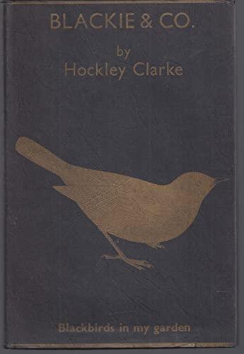 9780860330578: Blackie & Co.: Blackbirds in My Garden