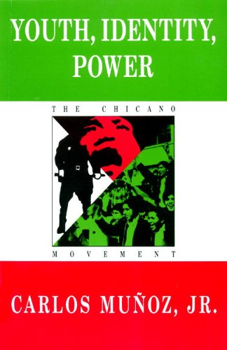 9780860919131: Youth, Identity, Power: The Chicano Movement (Haymarket Series on North American Politics and Culture)