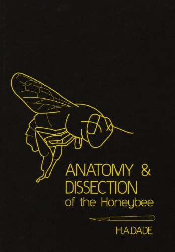 9780860982142: Anatomy and Dissection of the Honeybee