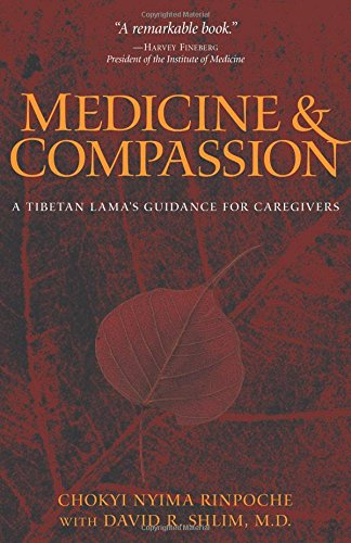 Medicine and Compassion : A Tibetan Lamas Guidance for Caregivers